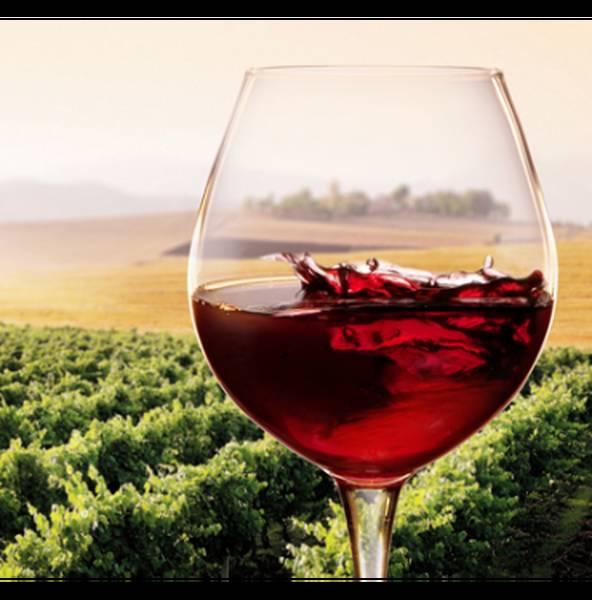 vin rouge corsé