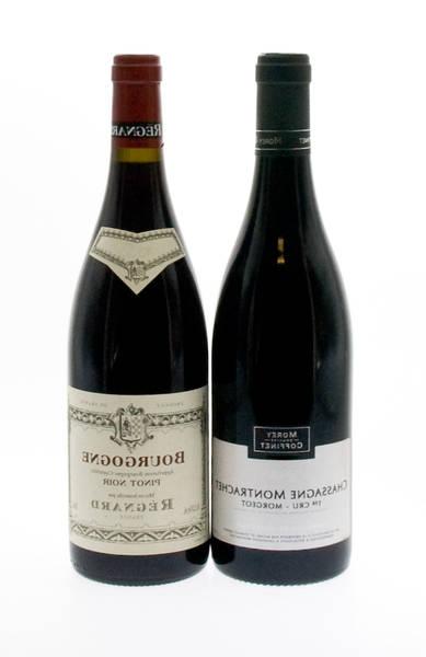 saint joseph vin rouge